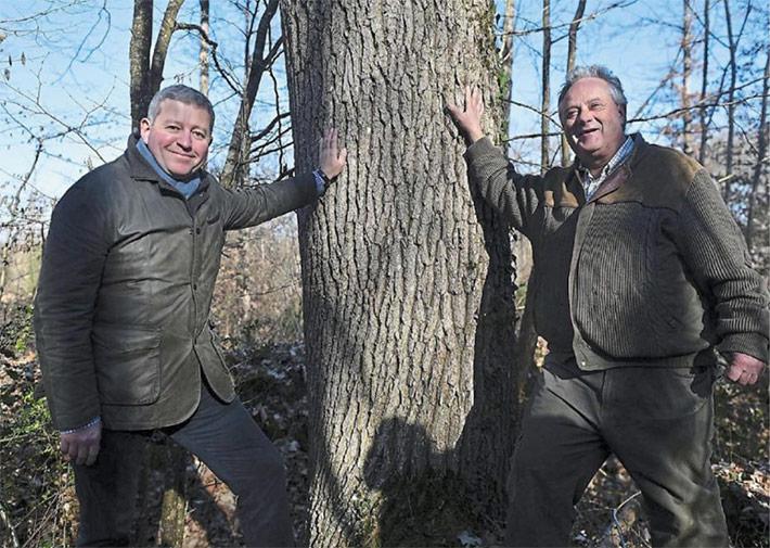 Ils vendent le carbone en forêt