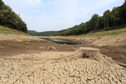 Météo France and the Ministry of Agriculture and Food warn of droughts